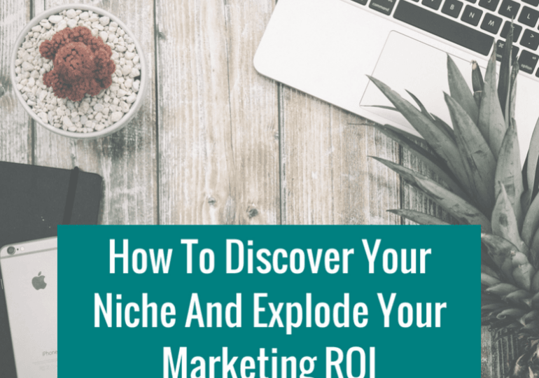 How To Discover Your Niche And Explode Your Marketing ROI (1)