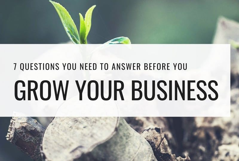 grow your business questions