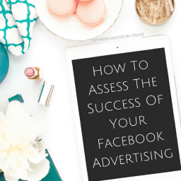 how to assess the success of your facebook advertising