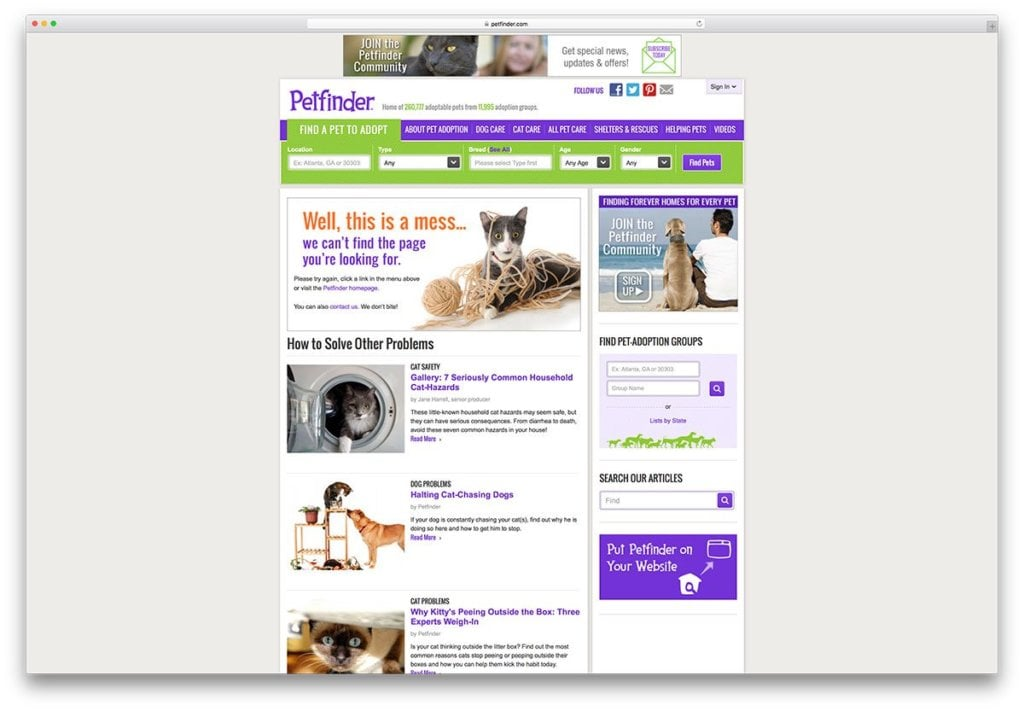 petfinder-creative-not-found-error-page-example